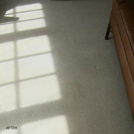 Sisal Carpet Cleaning Before And After Lazarian Carpet